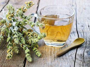 Βιολογικό Τσάι του Βουνού ή τσάι του Βελουχιού(sideritis raeseri) ΚΗΠΟΣ ΥΓΕΙΑΣ